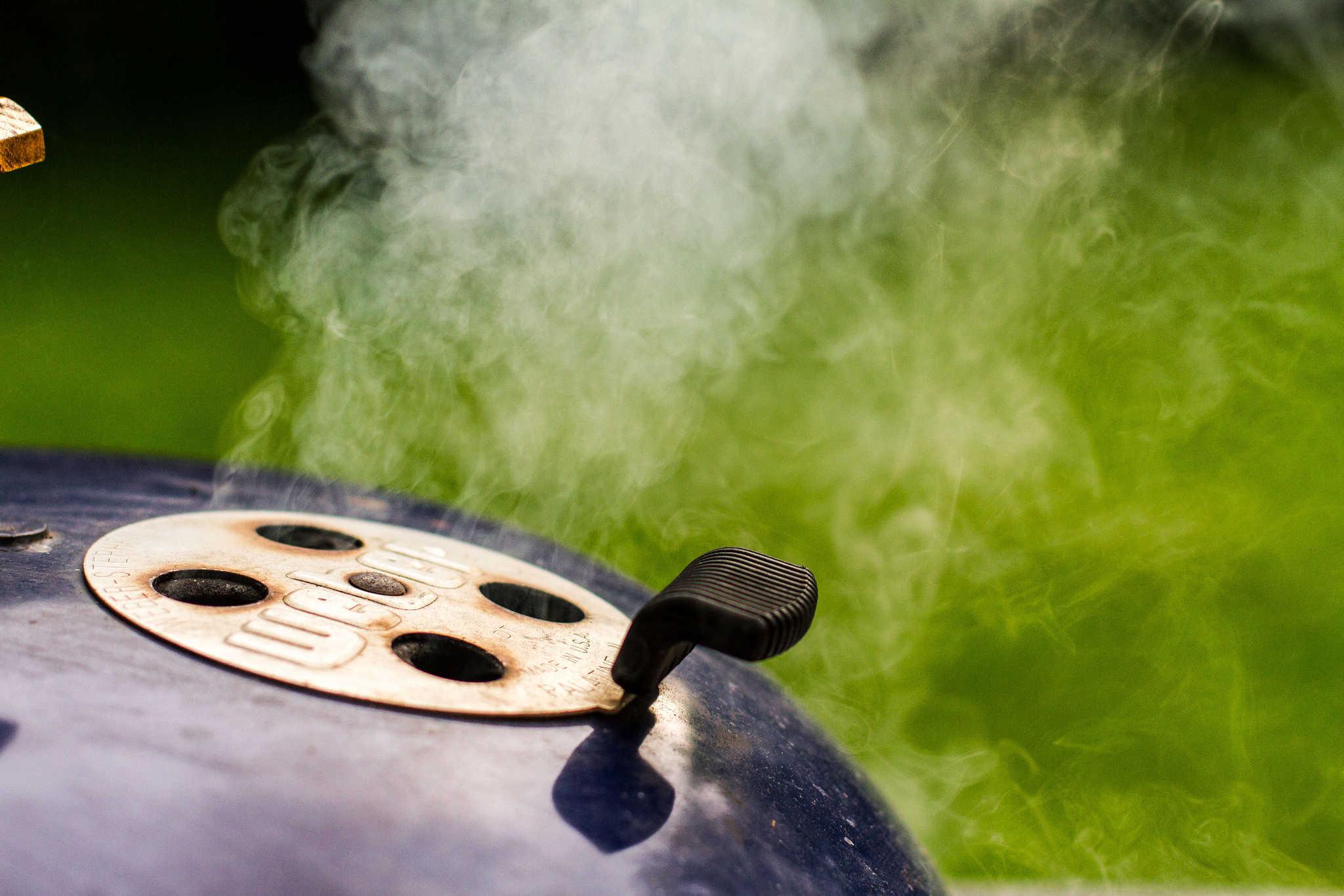 Elektro Gas Oder Holzkohlegrill : Der perfekte grill holzkohle elektro oder gas?